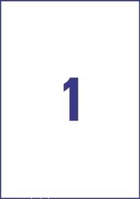 Etykieta uniwersalna Economy EC9186-100, rozmiar 210 x 297mm, 100 etykiet